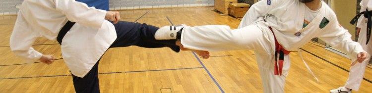 Taekwondo Kerpen: Das Konzept zur Selbstverteidigung der Deutschen Taekwondo Union