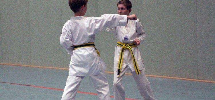 Gute Vorsätze mit dem SSK-Taekwondo-Team