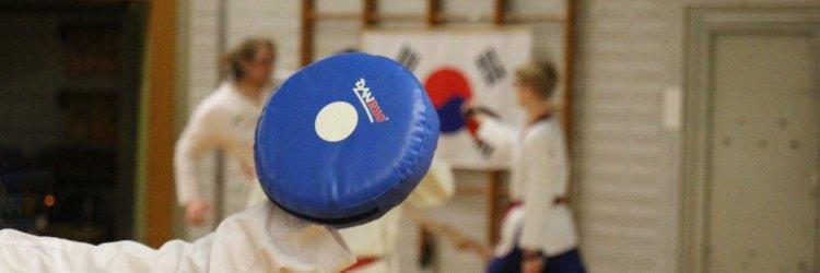 Taekwondo Kerpen: Das SSK-Taekwondo team beim Training