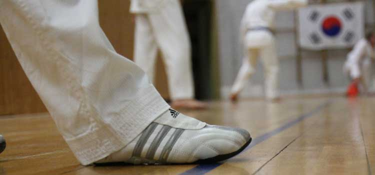 SSK-Taekwondo-Team: Kup-Prüfung am 03. Februar 2019   Daten