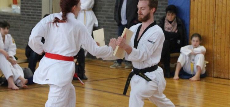 SSK-Taekwondo-Team: Kup-Prüfung am 03. Februar 2019