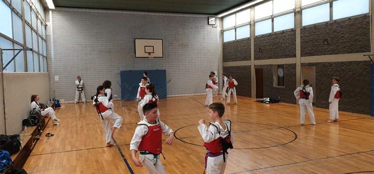 Taekwondo Kerpen: Anforderungen für die nächste Gürtelprüfung