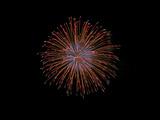 鹿島の花火2009(1) : 1024 * 768 pixels, 73KB