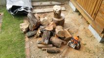 薪作りは鋭意進行中...なんですが