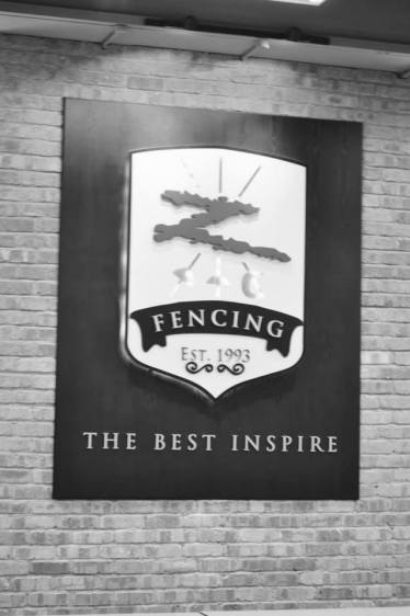10.08.2015 Z Fencing: the best inspire!!