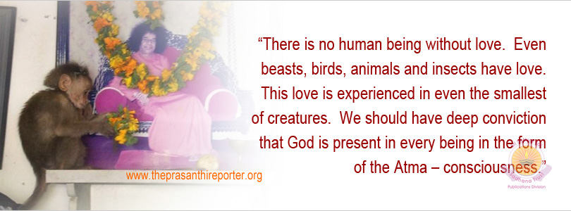 Animal Devotees Of The Lord