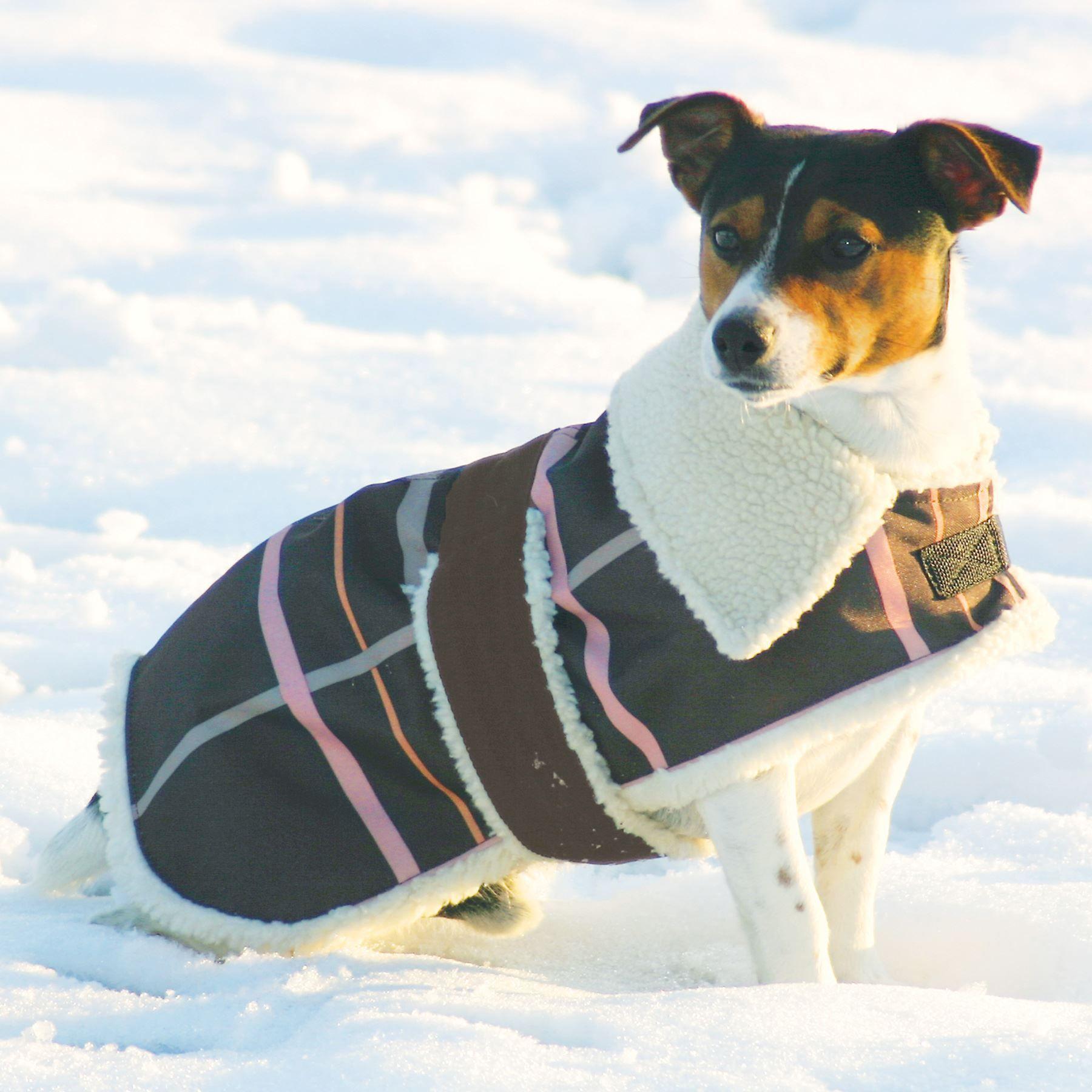 Fleece Lined Winter Dog Coats