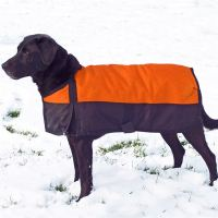 Dura-Tech Insulated Waterproof Dog Coat - XL