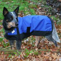 Dura-Tech Waterproof Dog Jacket - MD in Online Tent Sale ...