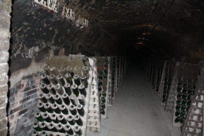 В 15 километрови подземия се съхранява свежата кава