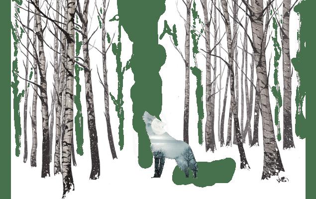 ilustracion nieve colage