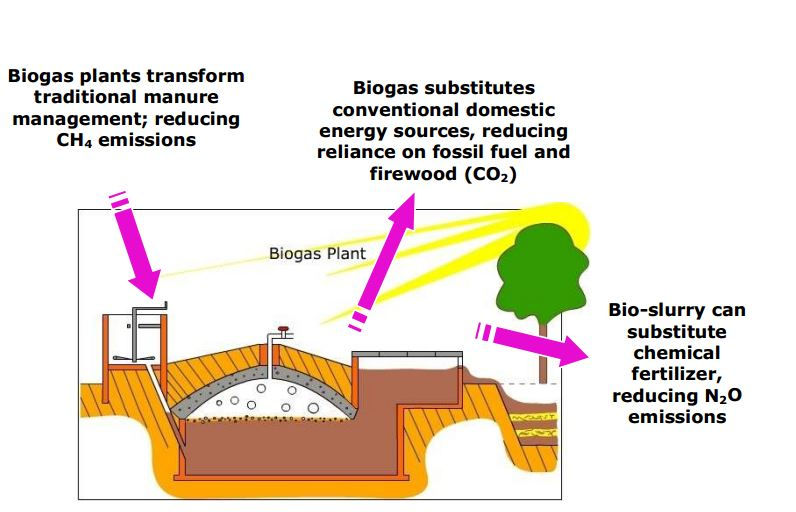 Small Scale Anaerobic Digestion