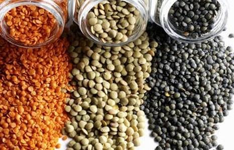 أسعار الحبوب اليوم الأحد 8 يناير 2017 فى مصر