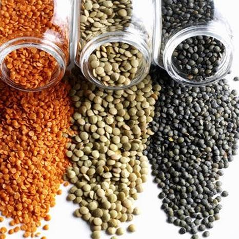 اسعار الحبوب