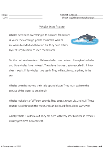 Reading comprehension – Whales (non-fiction)