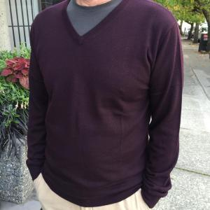Staccato Menswear Vancouver Tiger of Sweden vneck sweater 1