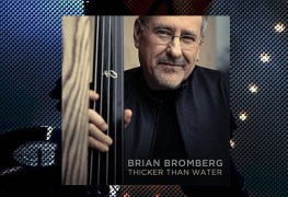 Brian Bromberg, Thicker Than Water Review 1