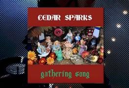 Cedar-Sparks-cd-staccatofy-fe-2