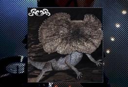 slush-cd-staccatofy-fe-2