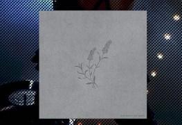 Joel-Ansett-cd-staccatofy-fe-2