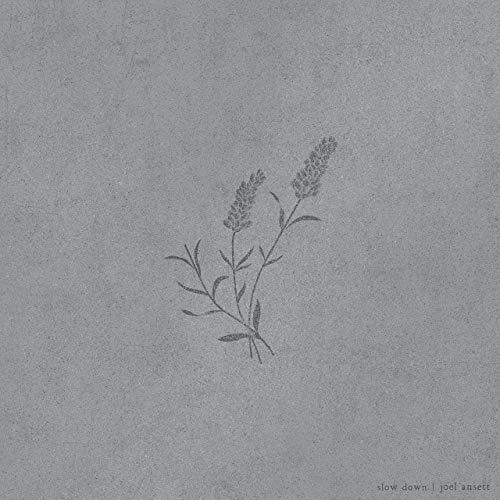 Joel-Ansett-staccatofy-cd