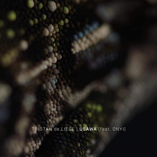 Tristan-de-Liège-staccatofy-cd