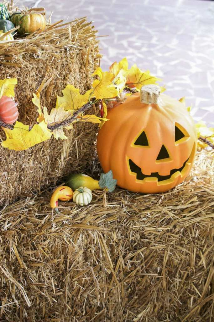 decorate-your-front-porch-for-fall-copy-4