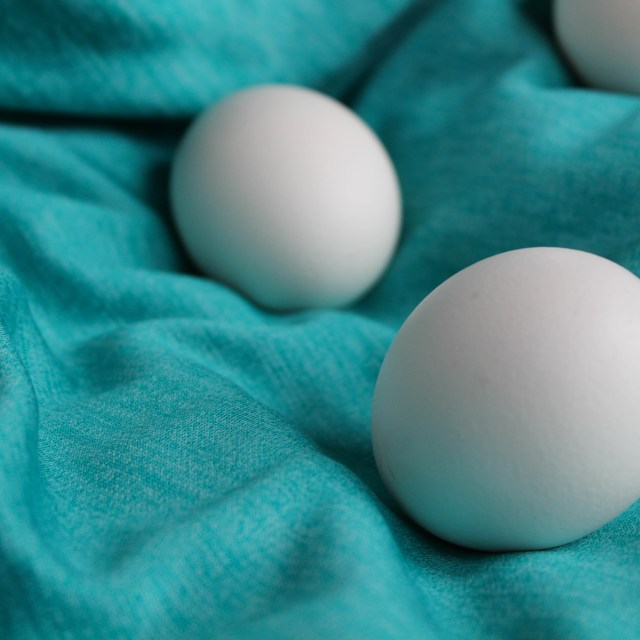 Are Cage-Free Eggs Better?