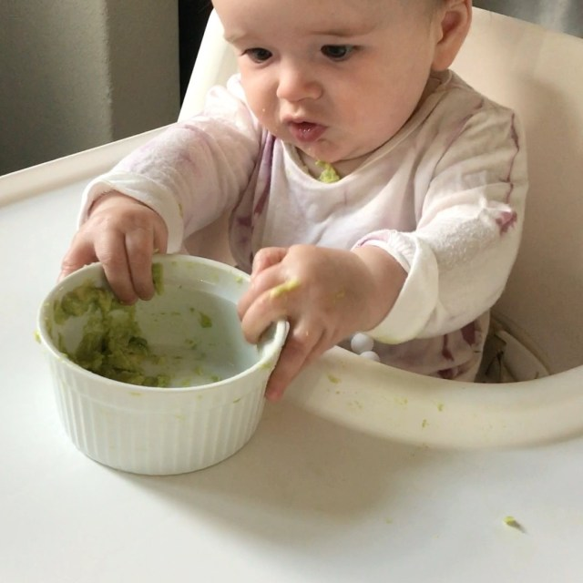 Introduce Solids to Baby | Stacey Mattinson Nutrition