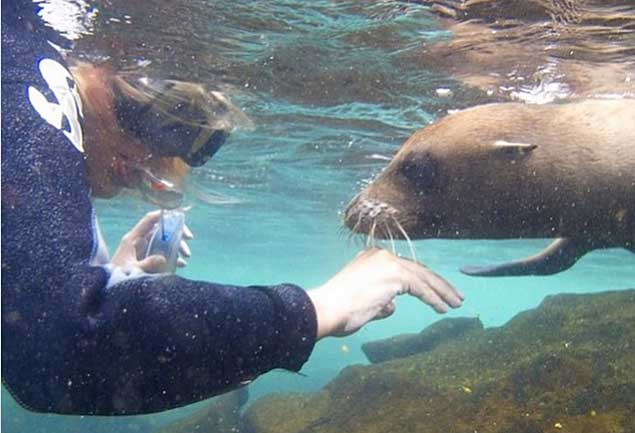 Photos: Grand views of the Galapagos