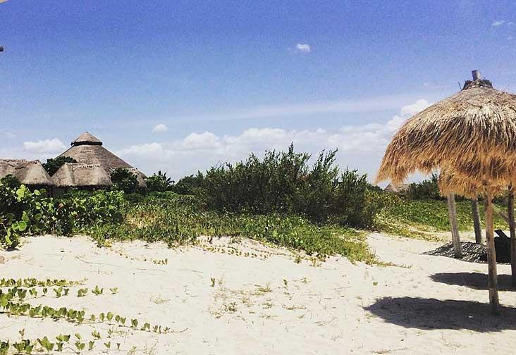 Photos: A day on the beach