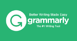Grammarly Tool For Bloggers