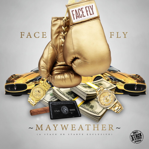 facefly_mayweather