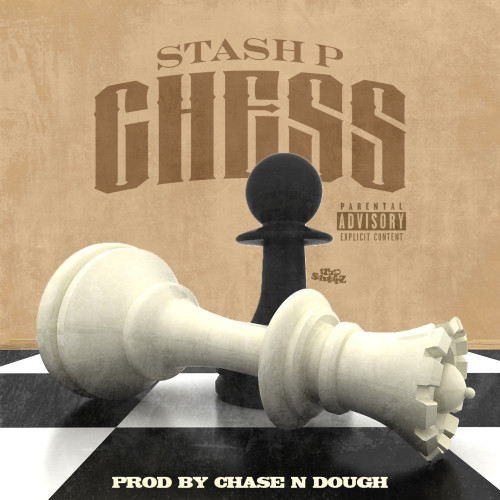 STASH CHESS COVER