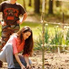Prepairing garden for planting