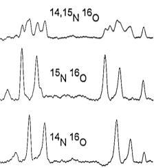 Publications: The nitrogen-pair oxygen defect in silicon