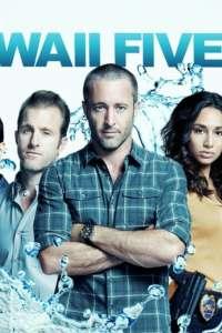 Hawaii Five-0 Season 10 Episode 22 (2020) Movie Subtitle – S10E022 Download Srt
