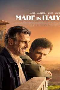 Made in Italy (2020) Subtitles