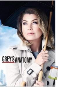 Greys Anatomy Season 17 Episode 5 (S17 E05) Subtitles