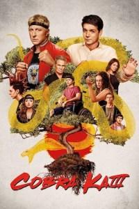 Cobra Kai Season 3 (S03) Hindi Series Subtitles