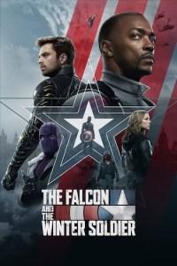 The Falcon and the Winter Soldier Season 1 Episode 1 (S01E01) TV Show