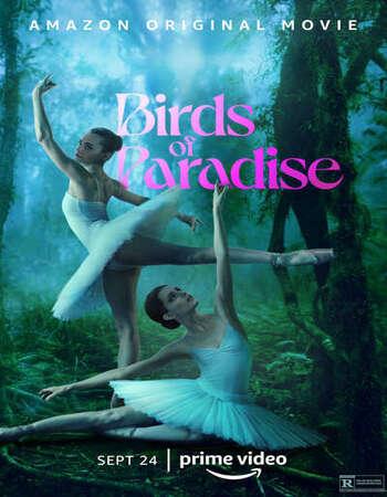 Birds of Paradise (2021) English Subtitles