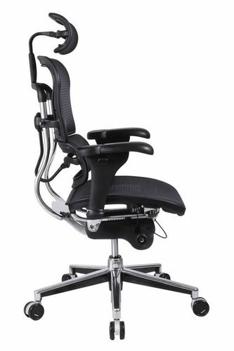 ergonomic chair lower back support intex inflatable pull out twin bed office with lumbar - home furniture design