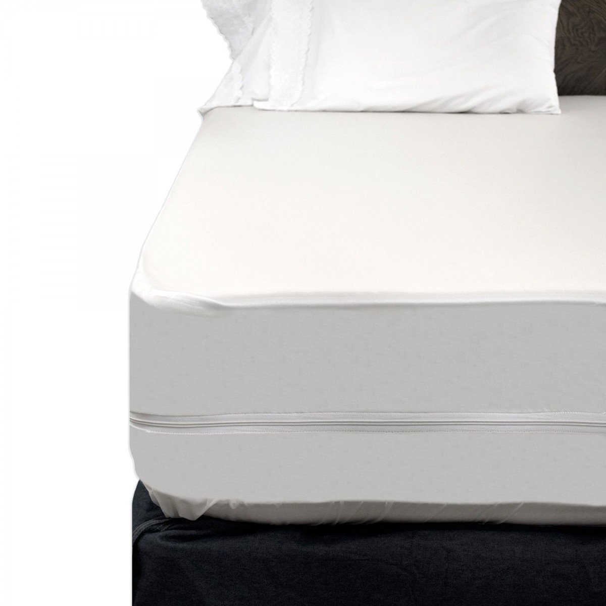 Zippered Mattress Cover Bed Bugs  Home Furniture Design