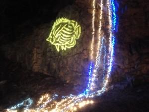 Ballard Park Lighting 2