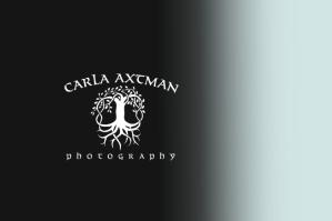 Carla Axtman's logo as a masthead.