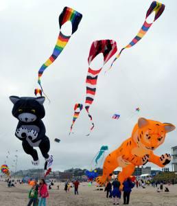 lincoln city | kite festival | oregon coast
