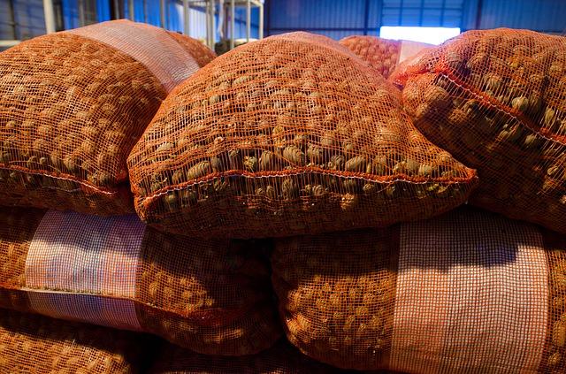 Price of pecans