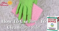 Use Borax To Clean Carpet And Remove Carpet Stains