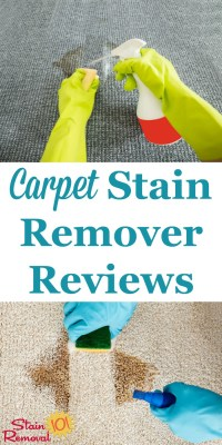 Carpet Stain Remover Reviews: Which Products Work Best?